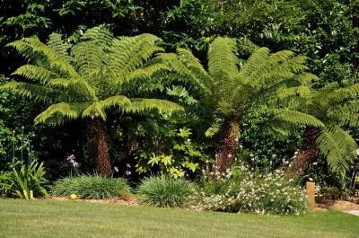 Le Carou Paysage - Aménagement et entretien de parcs et jardins - Perros-Guirec