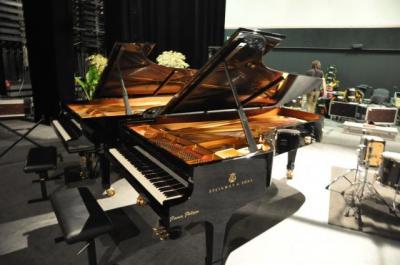 Pianos Philippe - Accordeur et réparateur de pianos - Pau