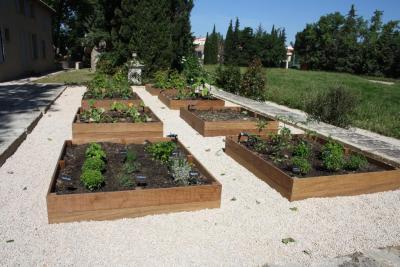 La Main Verte - Aménagement et entretien de parcs et jardins - Avignon