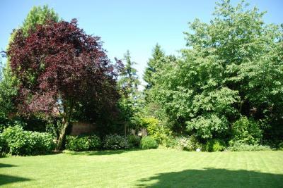 Les jardins du renard et du papillon - Paysagiste - Fontenay-sous-Bois