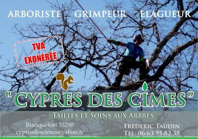 Cypres Des Cimes - Entreprise d'élagage et abattage - Blanquefort