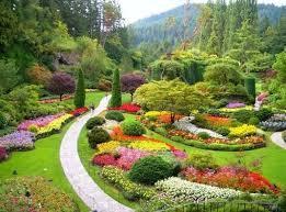 Izi Garden - Paysagiste - Plaisir