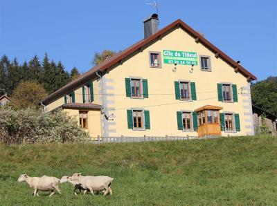 Vosges Location SARL - Gîte - Ventron