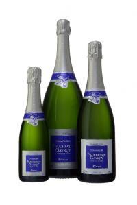 Faucheron-Gavroy - Vinificateurs pour vins - Tours-sur-Marne