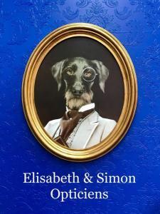 Elisabeth & Simon Opticiens - Opticien - Avranches