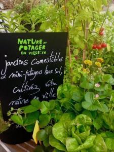 Nature & Potager En Ville SAS - Paysagiste - Bordeaux