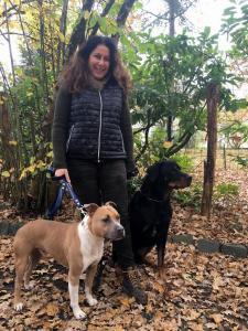 Dog Zone Center Aquitaine - Dressage d'animaux - Pessac