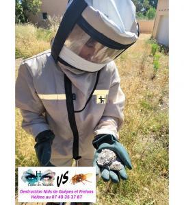 H contre les nuisibles - Dératisation, désinsectisation et désinfection - Clermont-l'Hérault
