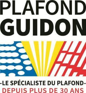 Plafond Guidon - Rénovation immobilière - Mulhouse