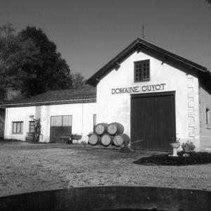 Guyot Baptiste - Producteur et vente directe de vin - Beaune