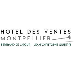 Hôtel des Ventes Montpellier Languedoc - Achat et vente d'antiquités - Montpellier