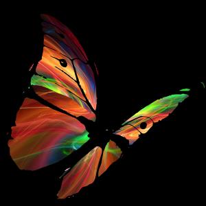 Papillon de Soie - Loisirs créatifs et travaux manuels - Pau