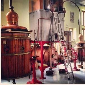 Distillerie Les Fils D' Emile Pernot SAS - Fabrication de boissons - La Cluse-et-Mijoux