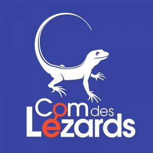 Com Des Lézards SARL - Création de sites internet et hébergement - Hyères