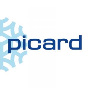 Picard - Surgelés - Metz