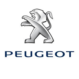 Peugeot - Concessionnaire automobile - Albert