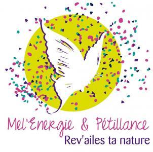 Accompagnement Energetique - Coaching de vie - Poitiers