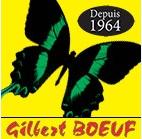 Boeuf Gilbert SARL - Pompes à chaleur - Niort