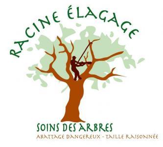 Racine Elagage - Paysagiste - Soulitré