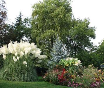 All Garden - Paysagiste - Vincennes
