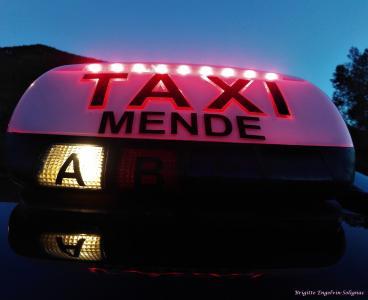Taxi Solignac Olivier - Taxi - Mende