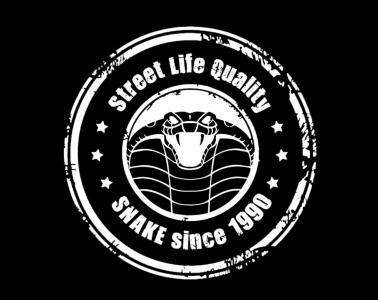 Snake Graffiti - Artiste peintre - Toulouse