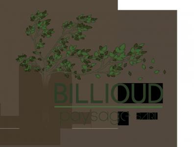 Billioud Paysage - Paysagiste - Entrelacs