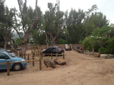 Tps Oi - Aménagement et entretien de parcs et jardins - L'Etang-Salé