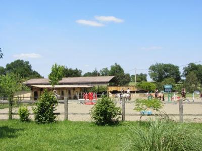 Cavale en Herbe - Centre équestre et d'équitation - Pouylebon