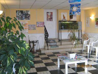 Clinique Vétérinaire de Condé - Vétérinaire - La Ferté-sous-Jouarre