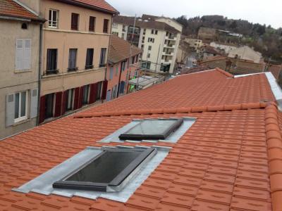 La Toiture Rhodanienne SAS - Rénovation de toitures - Vénissieux