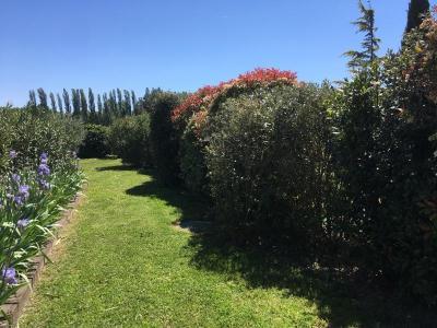 Viou - Location de matériel de jardinage - Aix-en-Provence