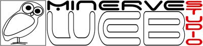 Minerve Web Studio - Agence marketing - Reims