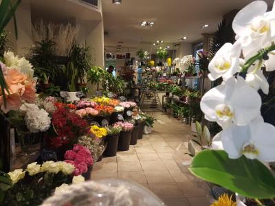 Atelier Fleurs Demours - Fleuriste - Paris
