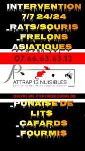 Attrap 13 Nuisibles - Dératisation, désinsectisation et désinfection - Marseille