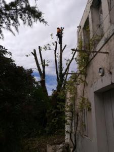 Baret Eric Espaces Verts - Aménagement et entretien de parcs et jardins - Marseille