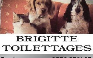 Brigitte Toilettage
