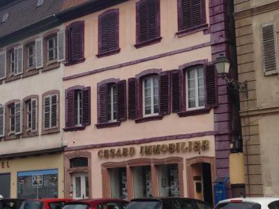 Cesard Gestion - Agence immobilière - Sélestat