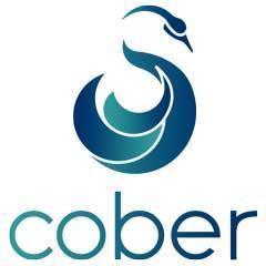 Cober Digital - Conseil, services et maintenance informatique - Paris