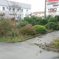 Côté Travaux Espaces Verts - TOULOUSE