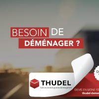 Demenagements Thudel Aux - PARIS