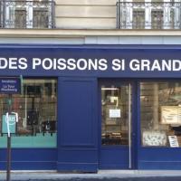 Des Poissons Si Grands DPSG - PARIS