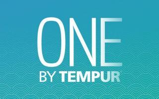 Dos Et Confort Expert Tempur