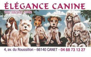 Elégance Canine