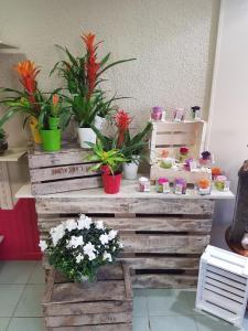 Em'Otions Fleuries - Fleuriste - Val-d'Oingt