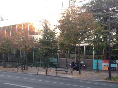 Fondation Cartier pour l'Art Comtemporain - Attraction touristique - Paris