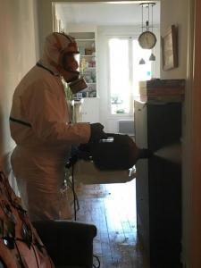 H3ds - Dératisation, désinsectisation et désinfection - Paris