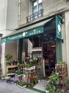 La marguerite A Paris - Jardinerie - Paris