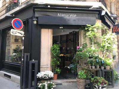 Natur Elle - Fleuriste - Paris