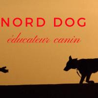 Nord-Dog - WATTIGNIES